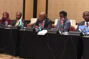 Horn of Africa Meeting in Djibouti